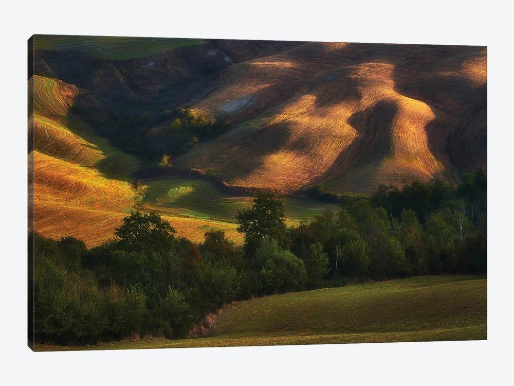 Tuscany Fields In The Lights - Italy by Rafal Kaniszewski 1-piece Canvas Print