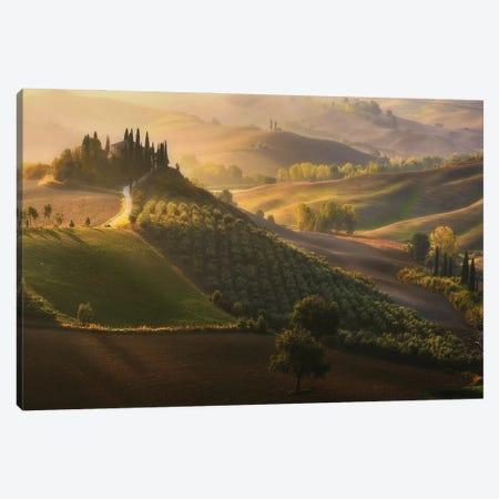 Belveder In Tuscany - Italy Canvas Print #RFL217} by Rafal Kaniszewski Canvas Art Print