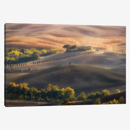 Gold Fields Tuscany - Italy Canvas Print #RFL228} by Rafal Kaniszewski Canvas Art Print