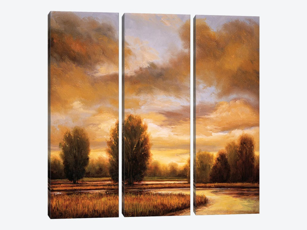 Away From It All I by Ryan Franklin 3-piece Canvas Artwork