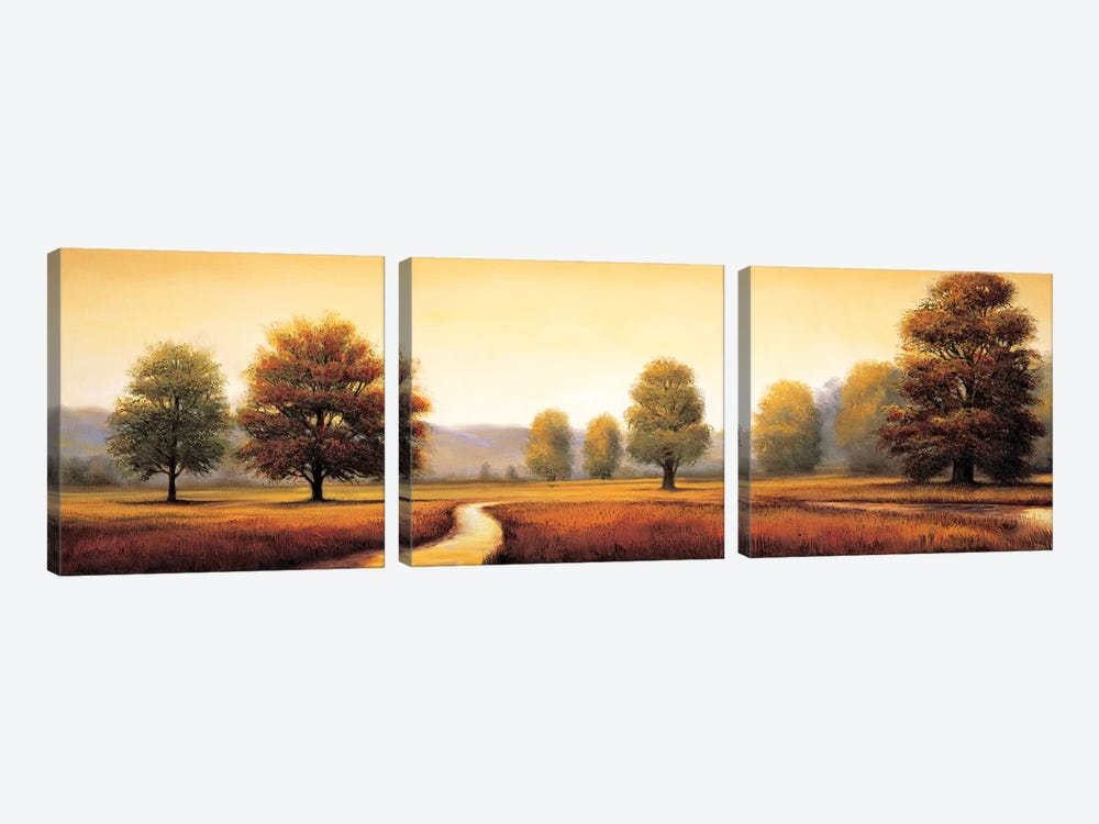 Landscape Panorama I by Ryan Franklin 3-piece Art Print
