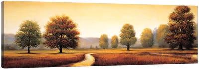 Landscape Panorama I Canvas Art Print