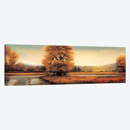 Landscape Panorama II Canvas Print #RFR5} by Ryan Franklin Art Print