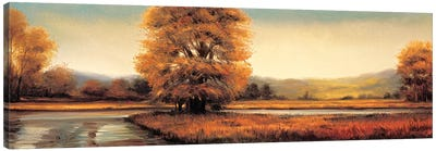 Landscape Panorama II Canvas Art Print