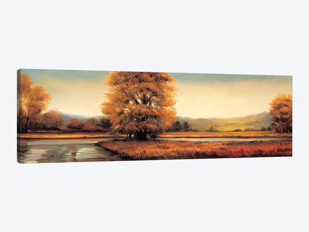 Landscape Panorama II by Ryan Franklin 1-piece Canvas Art