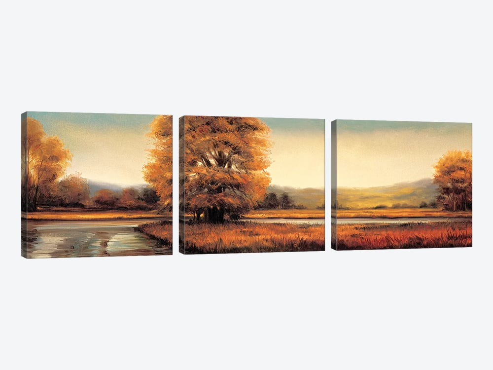 Landscape Panorama II by Ryan Franklin 3-piece Canvas Artwork