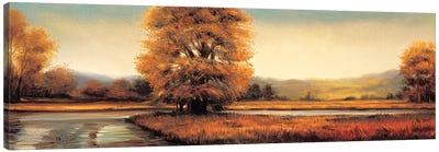 Landscape Panorama II Canvas Art Print