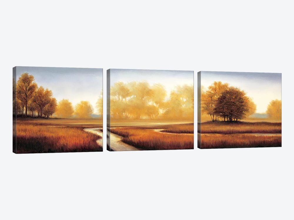 Landscape Panorama III by Ryan Franklin 3-piece Canvas Art Print