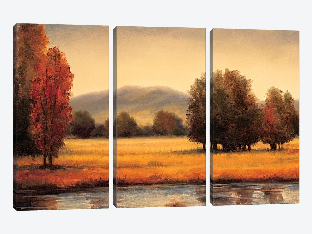 River's Edge by Ryan Franklin 3-piece Canvas Artwork