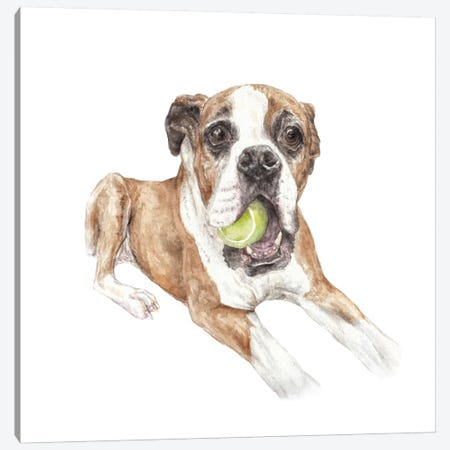 Boxer & Tennis Ball Canvas Print #RGF102} by Wandering Laur Canvas Artwork