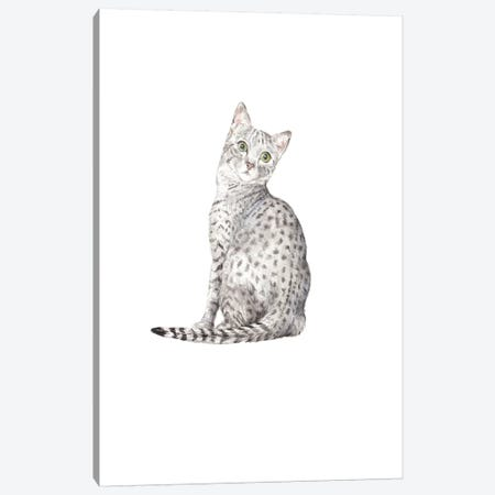 Egyptian Mau Canvas Print #RGF104} by Wandering Laur Canvas Art Print