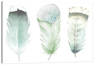 Green Feathers Canvas Art Print