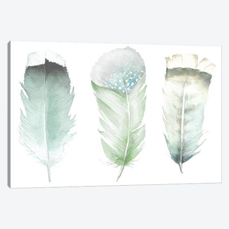 Green Feathers Canvas Print #RGF105} by Wandering Laur Art Print