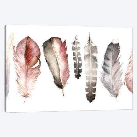 Pink Feathers Canvas Print #RGF107} by Wandering Laur Art Print
