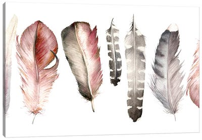 Pink Feathers Canvas Art Print