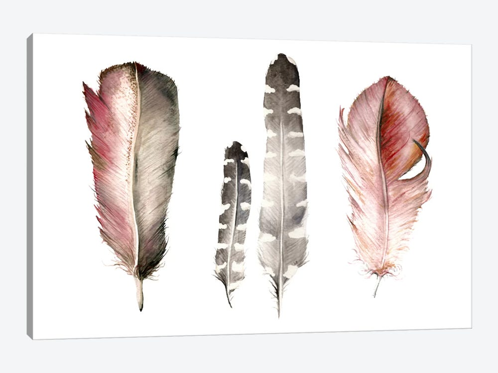 Feathers I by Wandering Laur 1-piece Art Print
