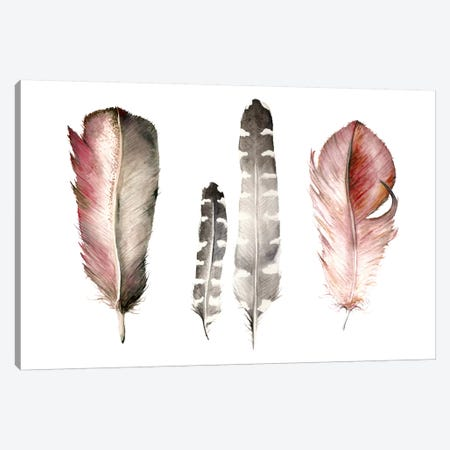 Feathers I Canvas Print #RGF108} by Wandering Laur Canvas Wall Art