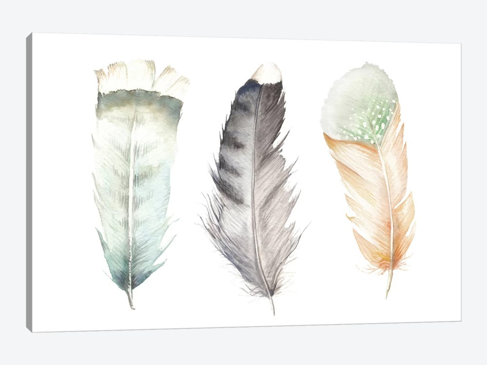 Feathers II by Wandering Laur 1-piece Canvas Art
