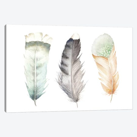 Feathers II Canvas Print #RGF109} by Wandering Laur Canvas Artwork