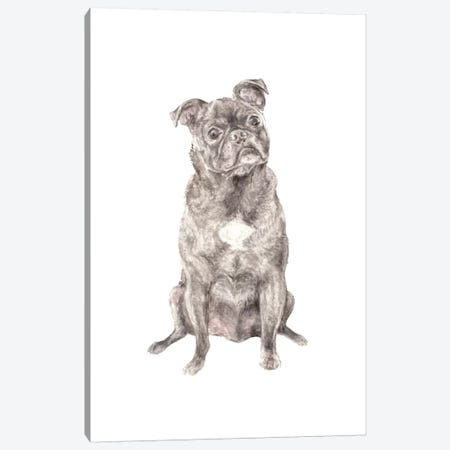 Moses The Pug Canvas Print #RGF115} by Wandering Laur Canvas Art