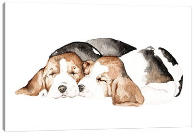 Beagles Canvas Art Print