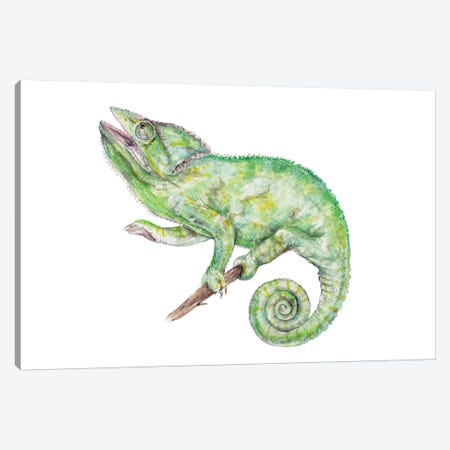 Chameleon Canvas Print #RGF132} by Wandering Laur Art Print