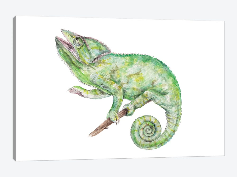 Chameleon by Wandering Laur 1-piece Canvas Artwork