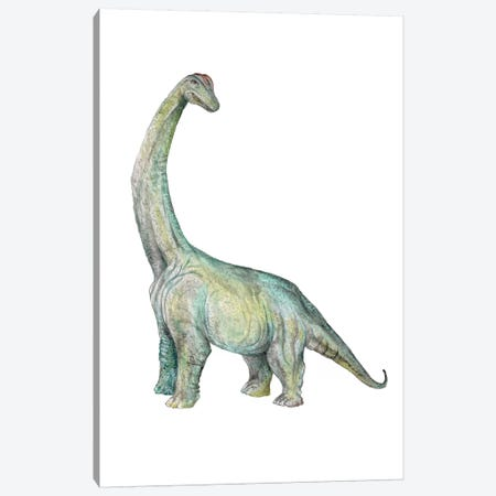 Dino Brachiosaurus Canvas Print #RGF134} by Wandering Laur Canvas Art