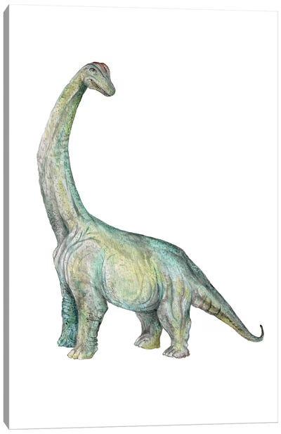 Dino Brachiosaurus Canvas Art Print