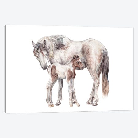Horse And Foal Canvas Print #RGF135} by Wandering Laur Canvas Wall Art