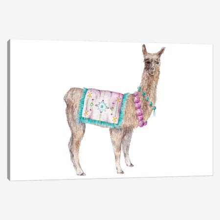 Llama Canvas Print #RGF137} by Wandering Laur Canvas Wall Art