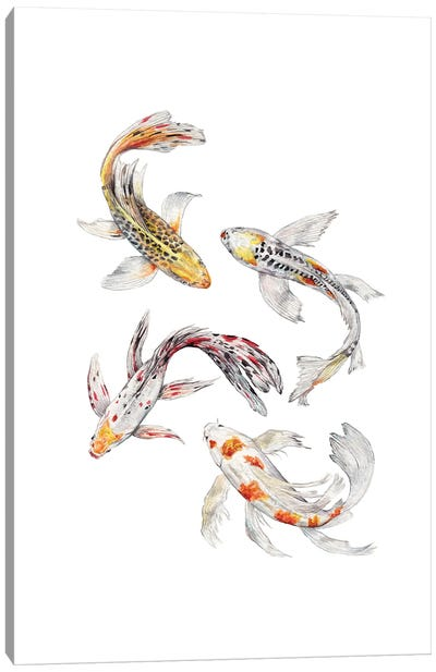 Watercolor Koi Fish Canvas Art Print