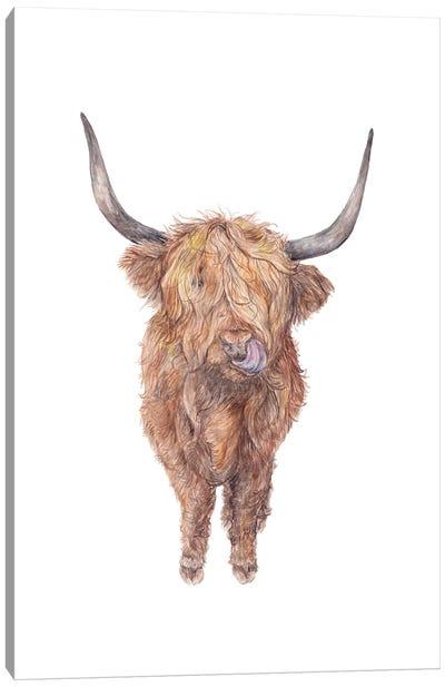 Watercolor Highland Cow Canvas Art Print