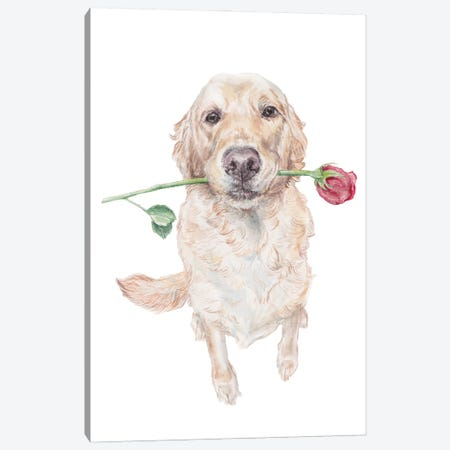 Sweet Golden Retriever Dog With Rose Canvas Print #RGF144} by Wandering Laur Canvas Print