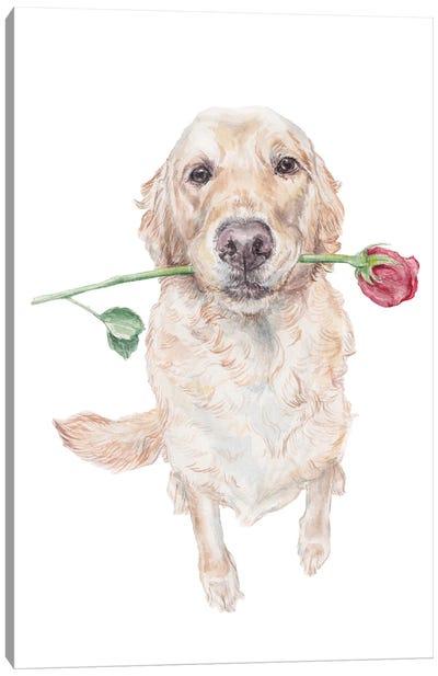 Sweet Golden Retriever Dog With Rose Canvas Art Print