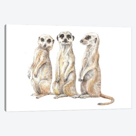 Funny Watercolor Meerkats Canvas Print #RGF146} by Wandering Laur Art Print