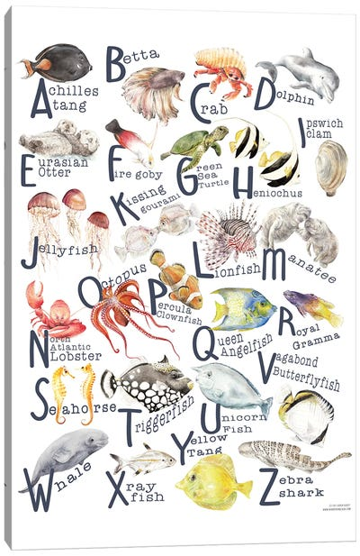 Under The Sea A To Z Fish Alphabet Poster Canvas Art Print