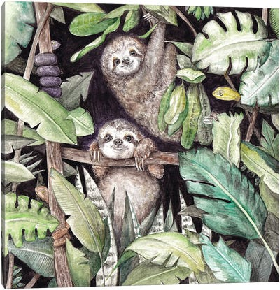Baby Sloths In The Jungle Canvas Art Print