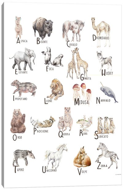 Animals A To Z Italian Canvas Art Print