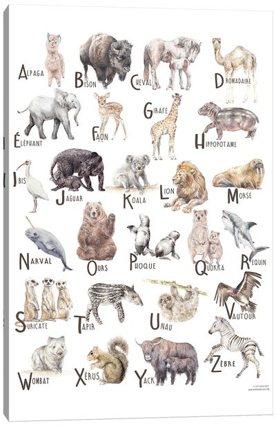 Animals A To Z French Canvas Art Print