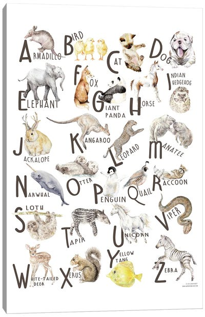 Watercolor Animals A To Z Canvas Art Print