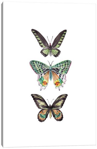 Watercolor Butterflies Canvas Art Print