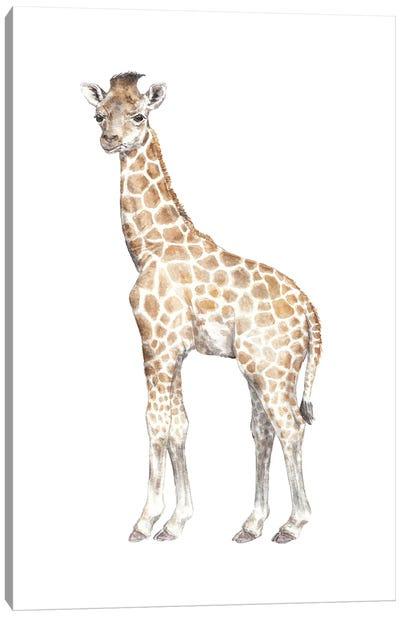 Watercolor Baby Giraffe Canvas Art Print