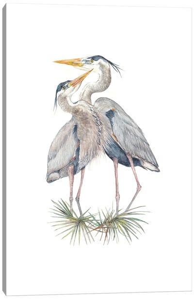 Watercolor Herons Canvas Art Print