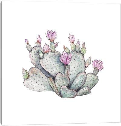 Watercolor Prickly Pear Canvas Art Print