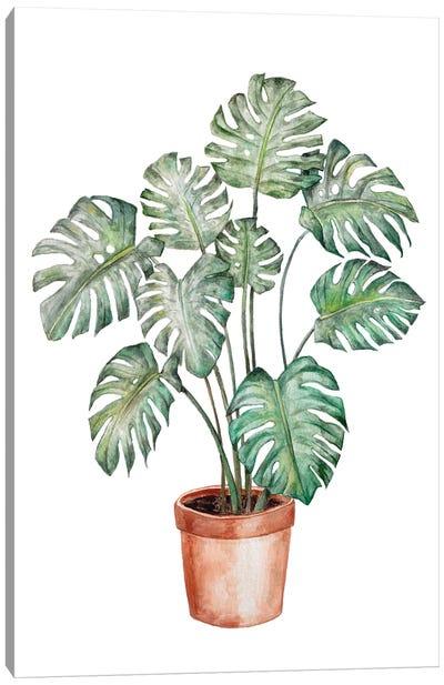 Watercolor Monstera Plant Canvas Art Print
