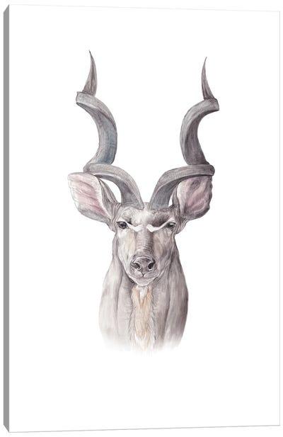 Watercolor Kudu Canvas Art Print