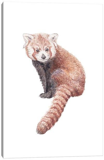 Watercolor Red Panda Canvas Art Print