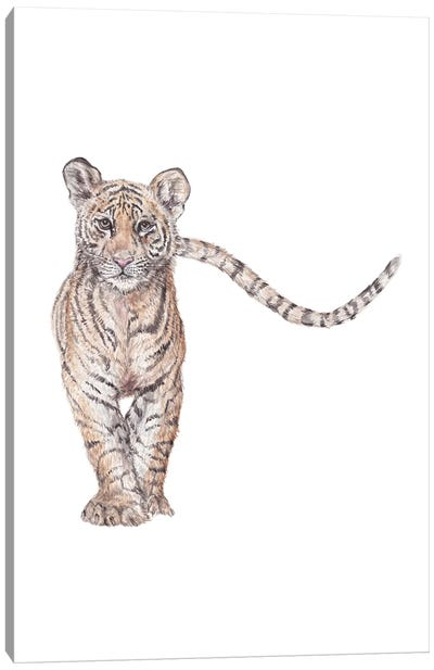 Watercolor Approaching Tiger Canvas Art Print