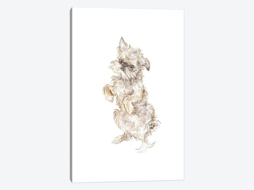 Brussels Griffon by Wandering Laur 1-piece Canvas Art